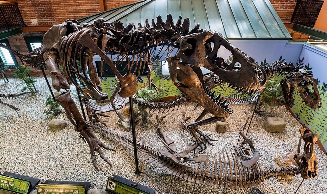 Ivan the T-Rex